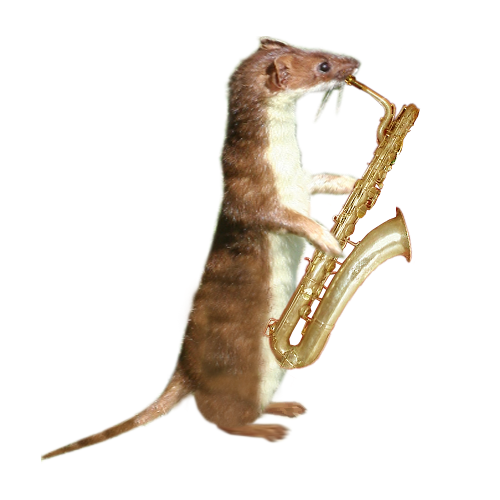 stoatright.png