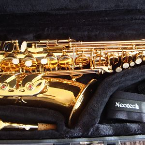 Fortissimo Alto for sale
